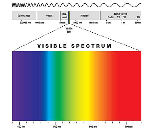 annals-medical-visible