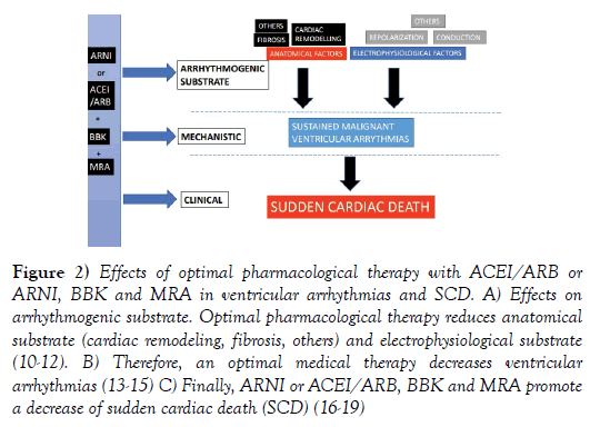 clinical-cardiology-pharmacological-therapy