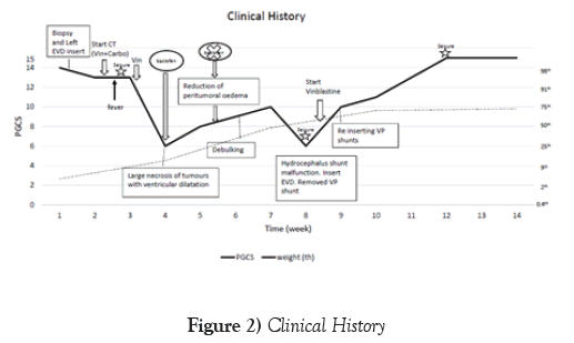 neurology-clinical-neuroscience-Clinical-History